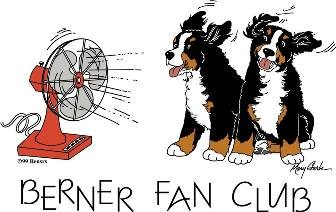 Berner Fan Club